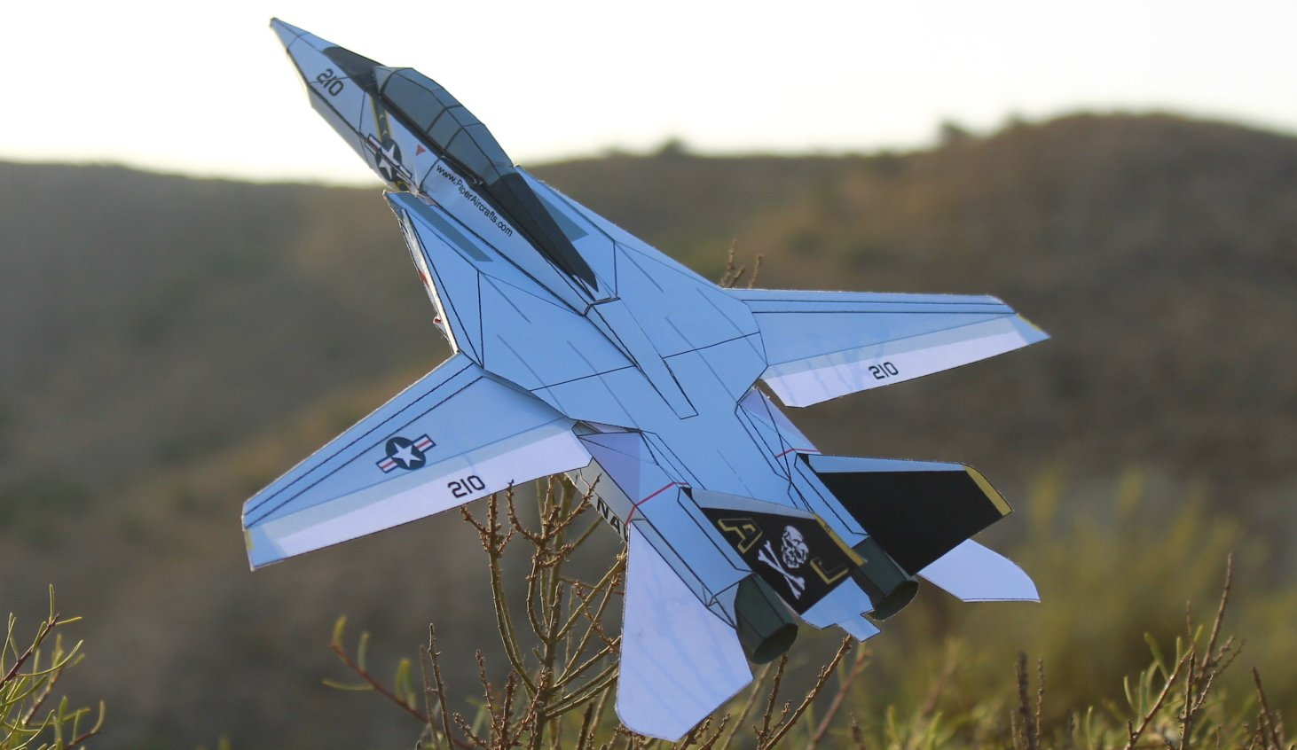 F-14-CL