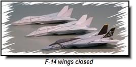 F-14-wcic
