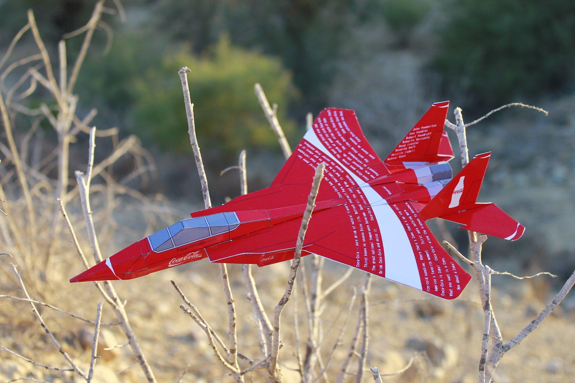 Coca-Cola Paper-F15-02