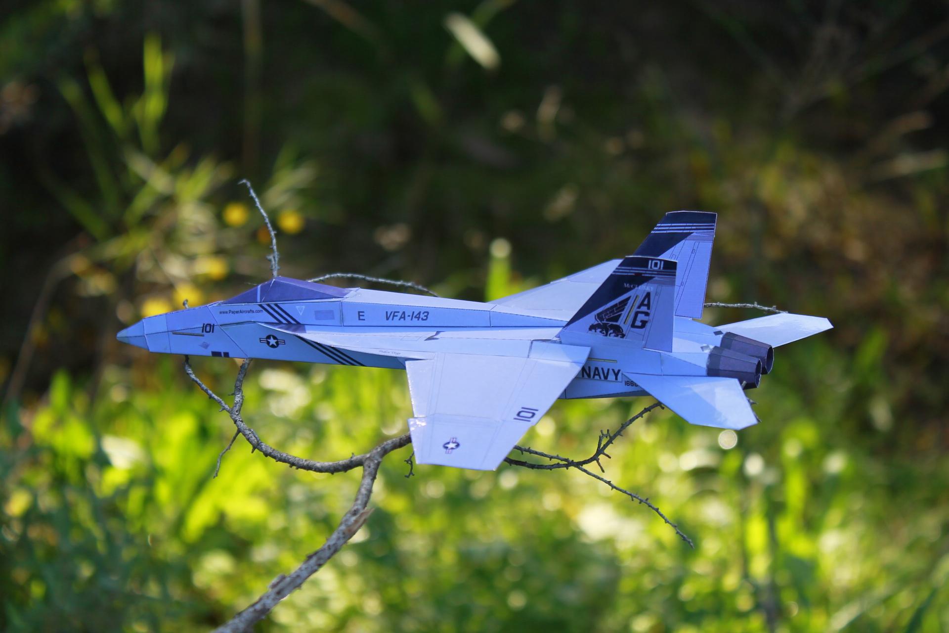 F-18E-VFA-143-P1