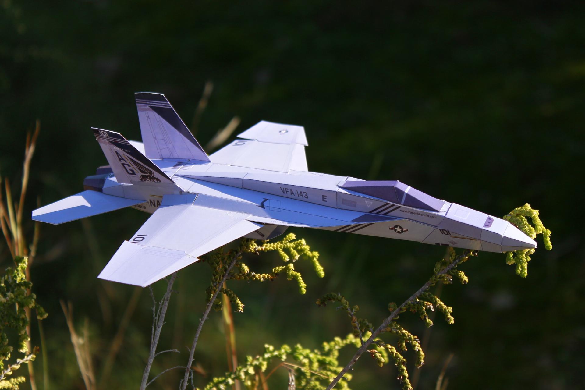 Paper F-18E Pukin'dogs - PaperAircrafts.com