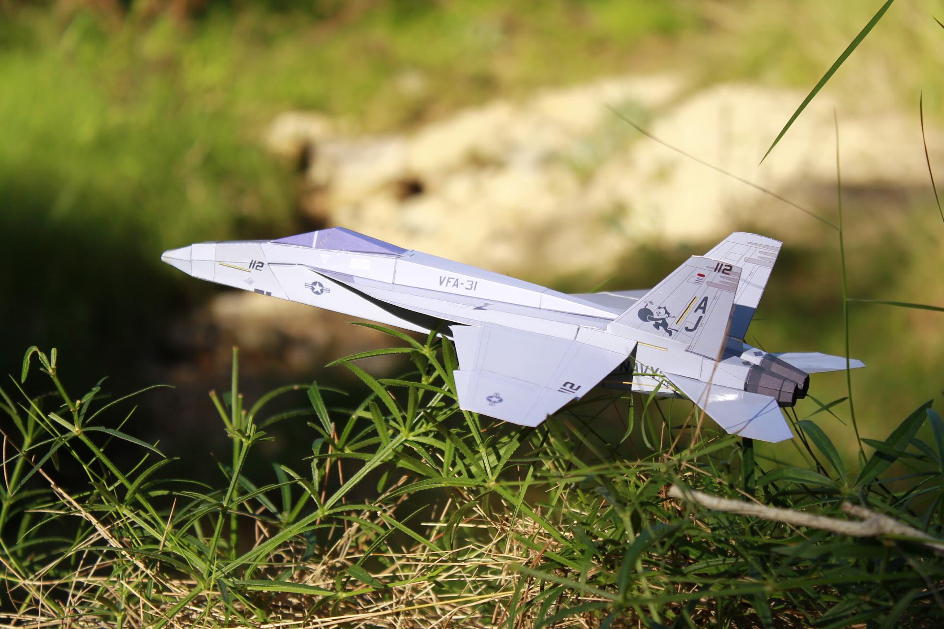 Paper F-18E Tomcatters - PaperAircrafts.com