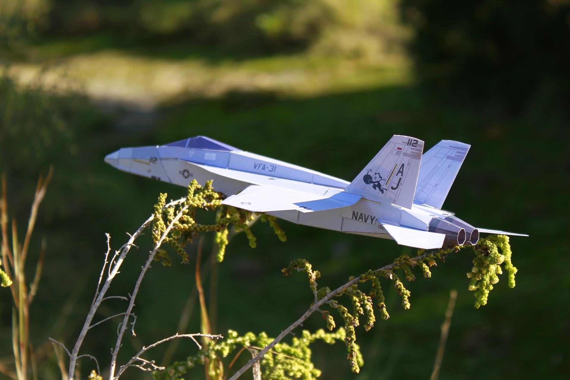 F-18E-VFA-31-P5